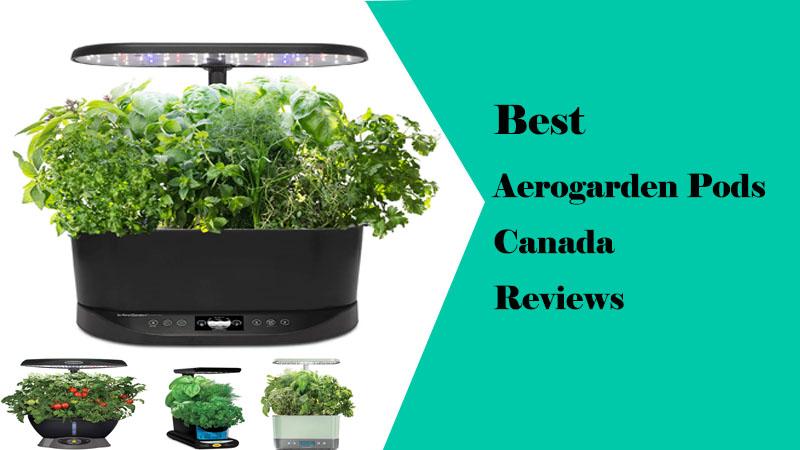 Best Aerogarden Pods Canada Reviews