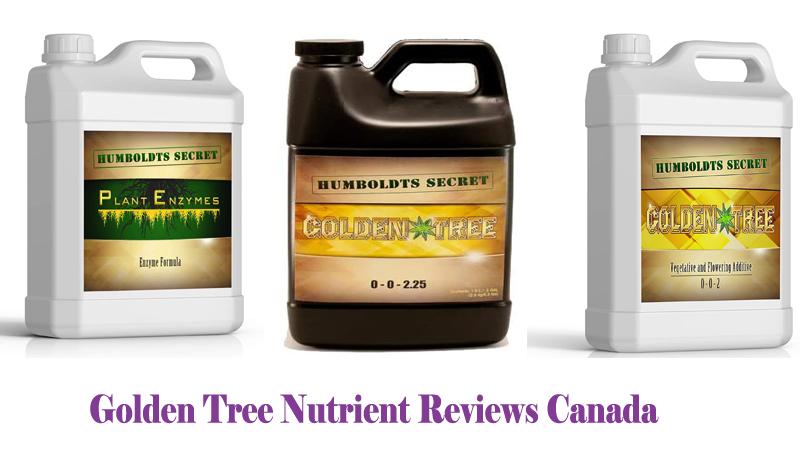 Golden Tree Nutrient Reviews Canada
